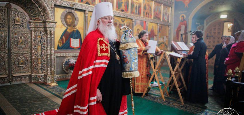 Митрополит Лев: Христос призывает человека участвовать в исцелении